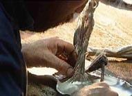 soudure de l'etain au fer